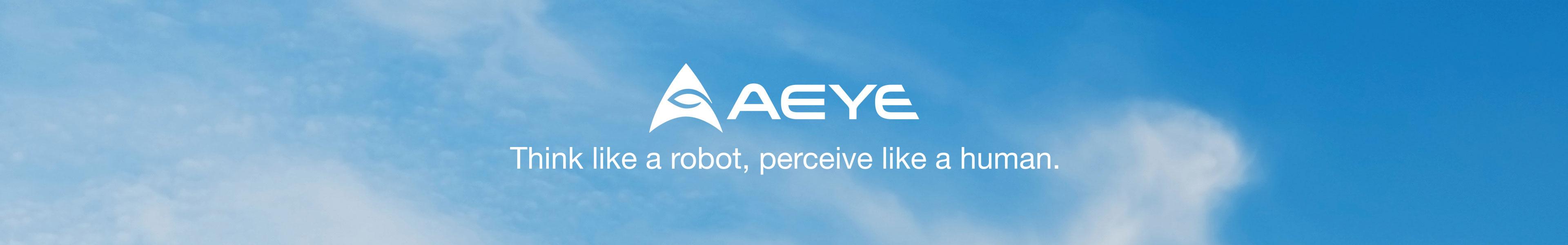 AEye Customer Success Portal